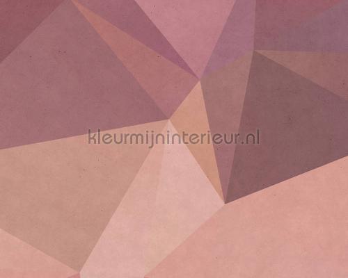 Polygonal 3 fotobehang dd110946 Interieurvoorbeelden fotobehang AS Creation