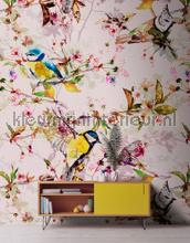 Songbirds 2 fotobehang AS Creation Trendy Hip