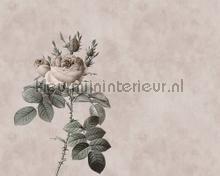 Rose 3 fotobehang AS Creation alle afbeeldingen