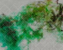 Colour Network 3 fotobehang AS Creation alle afbeeldingen