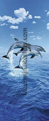 3 dolphins fotomurali 599 sale photomurals Ideal Decor