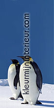 pinguins links fotobehang Dutch Wallcoverings Digiwalls 70027
