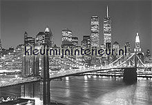 Manhattan Skyline at Night photomural Ideal Decor Ideal-Decor Poster 138
