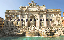 trevi fountain fotobehang Noordwand Evolutions II 1165