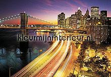 NYC Lights fotobehang Komar City 8-516