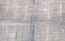 Concrete fotobehang Komar Trendy Hip