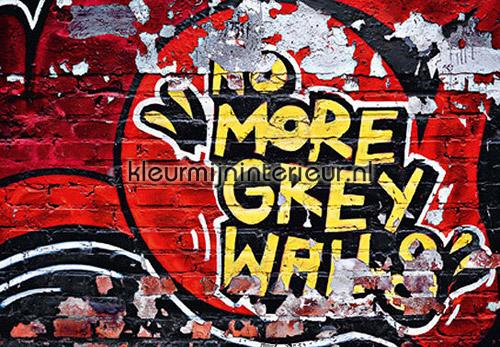 No more grey walls fotobehang 126 kinderkamer jongens Ideal Decor