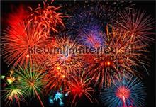 Fireworks fotobehang Ideal Decor Ideal-Decor Poster 00131