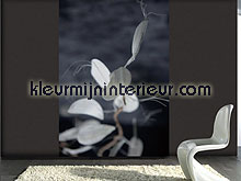 mantis fotomurales 1042 One Dutch Wallcoverings