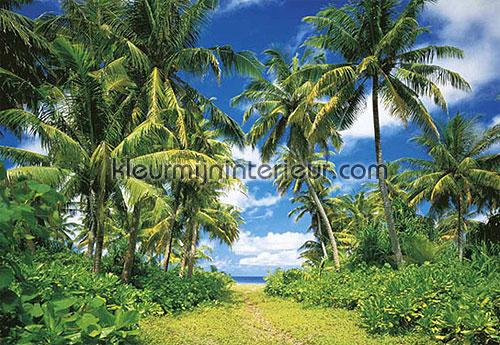 Island in the sun fotobehang 273 aanbieding fotobehang Ideal Decor