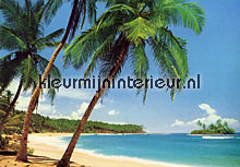 Ile tropicale fotobehang Ideal Decor Zon Zee Strand