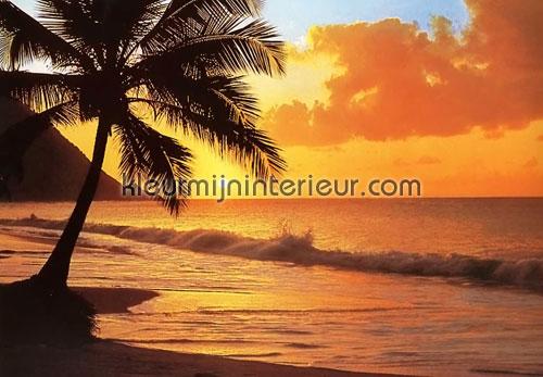 pacific sunset fotobehang 218 aanbieding fotobehang Ideal Decor