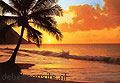 Pacific sunset photomural Ideal Decor sale photomurals