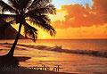 Pacific sunset papier murales Ideal Decor offre