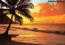 Pacific sunset fotomurales Ideal Decor oferta