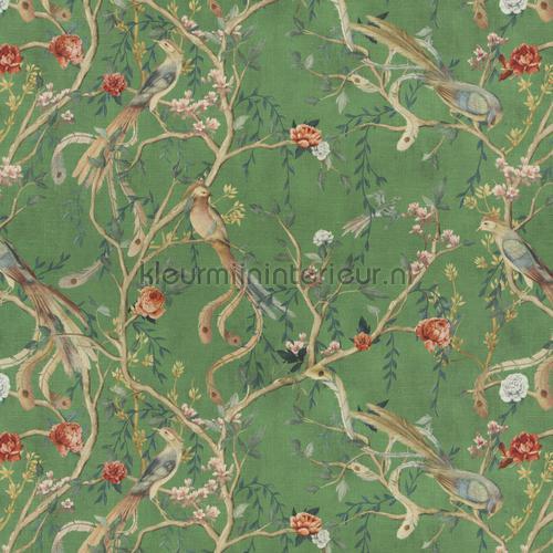Avventura curtains ca1491-030 Butterflies - Birds JAB