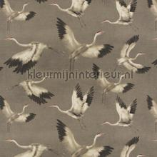 Azzurro curtains ca1493-020 Butterflies - Birds JAB