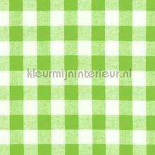 Boerenbont ruit 10mm groen gordijnen Kleurmijninterieur ruiten