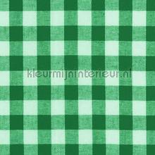 Boerenbont ruit 10mm donker groen gordijnen Kleurmijninterieur landelijk