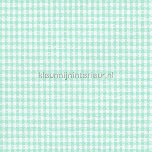 Boerenbont ruit 2mm licht mint gordijnen Keuken Kleurmijninterieur