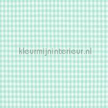 Boerenbont ruit 2mm licht mint curtains Kleurmijninterieur ready made