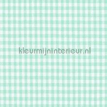Boerenbont ruit 5mm licht turquoise gordijnen Kleurmijninterieur ruiten