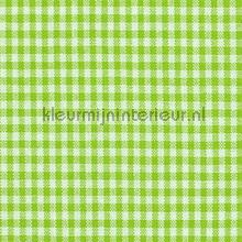 Boerenbont ruit 5mm groen curtains Kleurmijninterieur kitchen