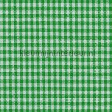 Boerenbont ruit 5mm donker groen gordijnen Kleurmijninterieur landelijk