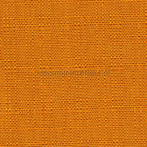 Bolero Oranje cortinas 697-183 Fuggerhaus