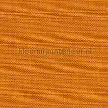 Bolero Oranje vorhang Fuggerhaus Bolero 697-183