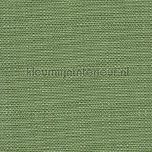Bolero Donker Mos Groen rideau Fuggerhaus Bolero 697-299