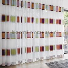Crocus cortinas Kobe romântico