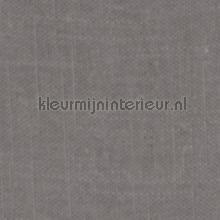 Delicate Frost Gray gordijnen Kleurmijninterieur Voile