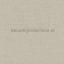 Moonbeam curtains Kleurmijninterieur Voile