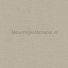 Oyster Gray curtains Kleurmijninterieur Voile