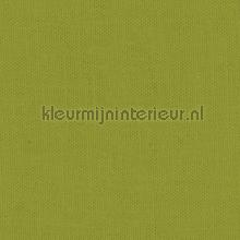 Citronelle gordijnen Kleurmijninterieur Voile
