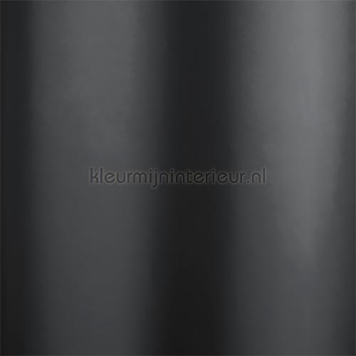 Denton Zwart verduisterend cortinas 5801-01 Homing