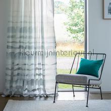Haiku Liquorice/Steel cortinas Scion todas las imágenes