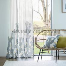 Opunita hemp curtains Scion teenager