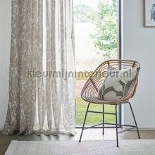Kukkia slate dandelion cortinas Scion todas las imágenes