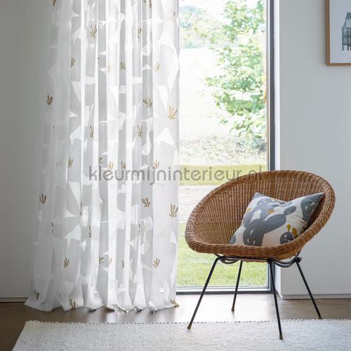 ayaka dandelion cortinas 132701 flores Scion