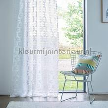 Pajaro biscuit curtains Scion ready made