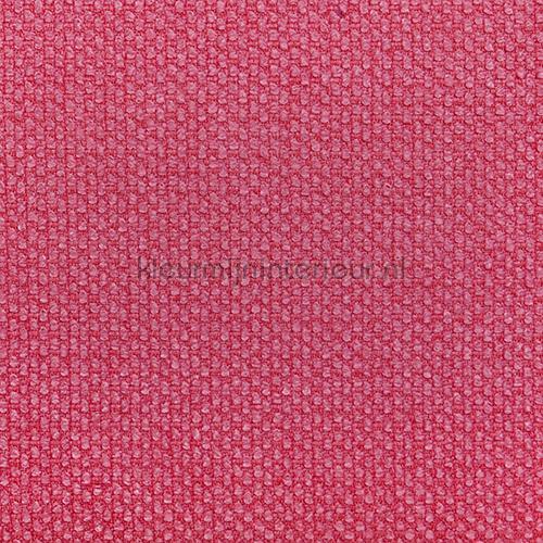 Karneol Hibiscus tendaggio 7063-28 Fuggerhaus