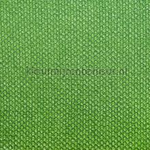 Karneol Ivy gordijnen Fuggerhaus Karneol 7062-43