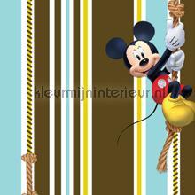 Mickey klimt omhoog curtains Kleurmijninterieur boys