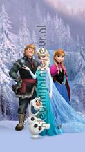 Frozen gordijnen Kleurmijninterieur meisjes