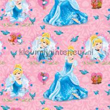 Cinderella gordijnen Kleurmijninterieur meisjes