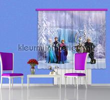 Frozen gordijnen Kidz Kleurmijninterieur | kleurmijninterieur.nl