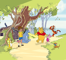 Winnie takes a walk gordijnen Kleurmijninterieur Baby Peuter