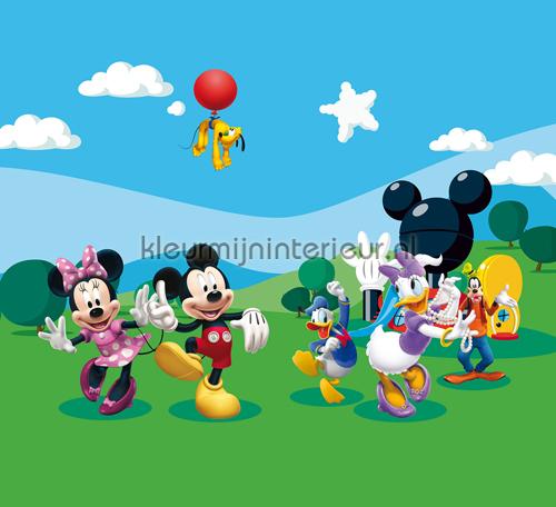 Mickey and friends gordijnen FCS XL 4307 Gordijnstof Top 15 Kleurmijninterieur